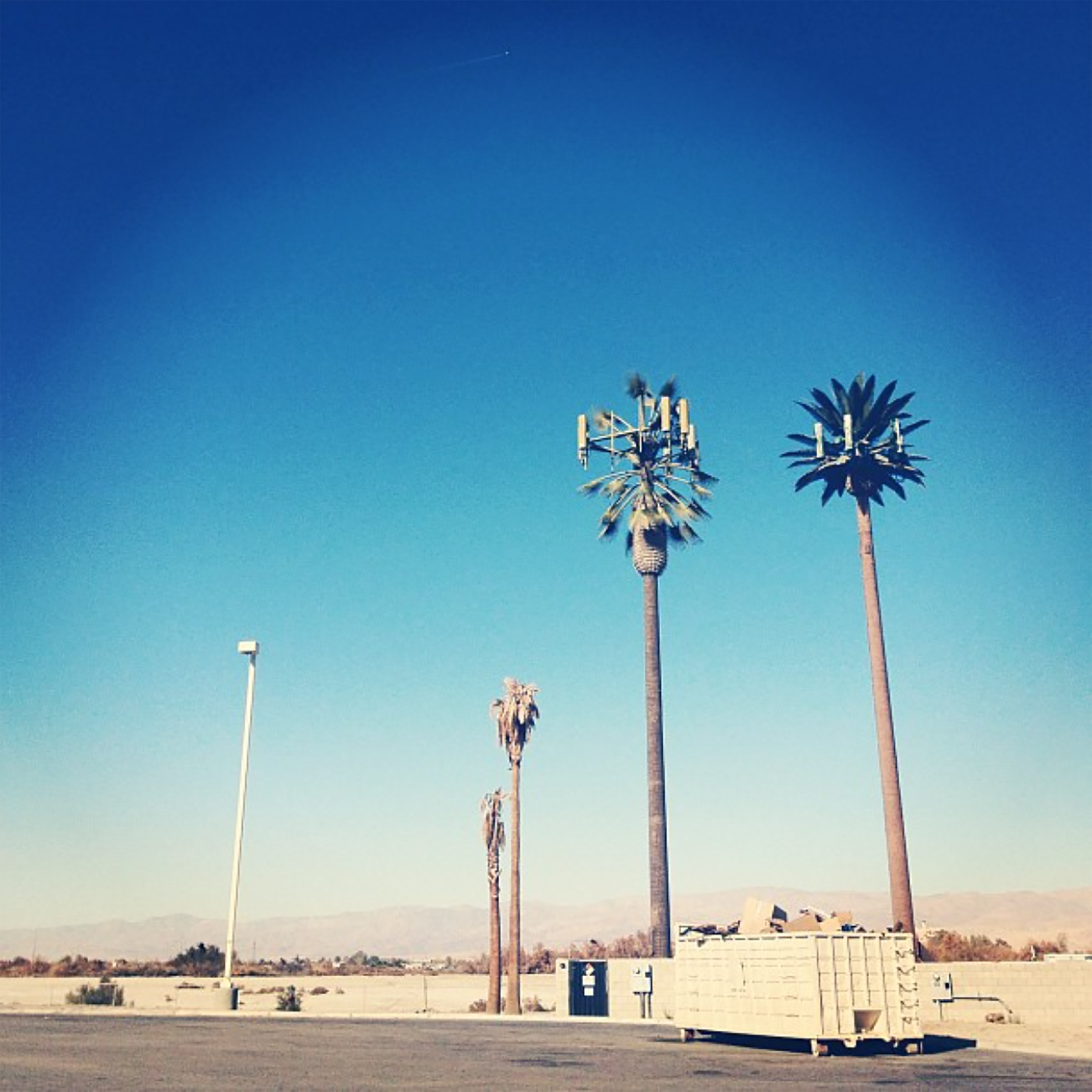 Fig. 1 Invisible infrastructures. Camouflaged antenna in the form of a palm tree.